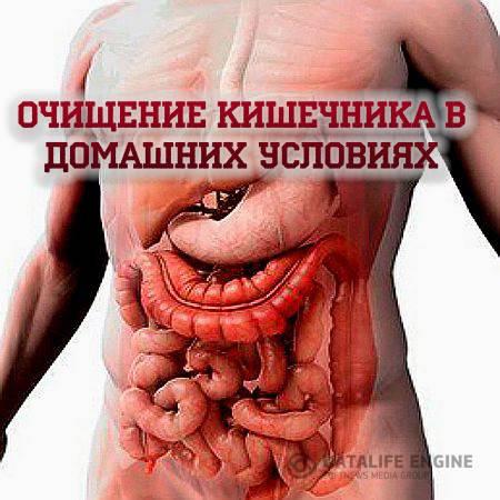 Как проверить свой кишечник в домашних условиях